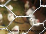 Tela metálica de pollo de Sailin con torcedura reversa