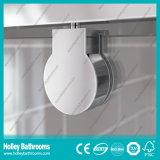 Porte articulée par douche de première qualité avec le bâti d'alliage d'aluminium (SE915C)
