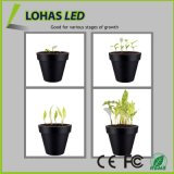 Bras à col de demoiselles Flexible Neck 360 degrés LED Plant Grow Light for Indoor Plants