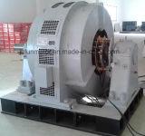 大型の高圧傷回転子のスリップリング3-Phase非同期モーターシリーズYr1250-100/1430-1250kw