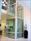 Лифт дома малого домашнего подъема 4 людей селитебный