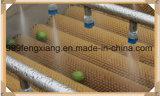 Type de pinceau Eau Fruits Légumes Lavage Nettoyage Rinçage Rinceur