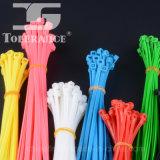 Cinta plástica de nylon nas cintas plásticas