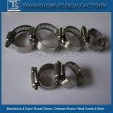 Американская нержавеющая струбцина трубы зажима для резиновой трубы шестерни глиста Steel304