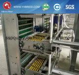 Nieuw Type 6 van Prijs H van de Fabriek van het Ontwerp de Kooien van de Laag van de Batterij van Rijen