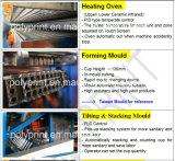 Машина Thermoforming чашки высокого качества автоматическая Pet/PP/PS