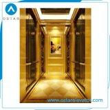 편리하고 호화스러운 작은 가정 상승 별장 엘리베이터