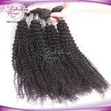 Cabelo humano brasileiro Curly Kinky do cabelo 100% do Virgin