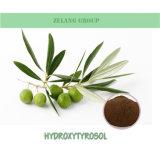 Fabrik-Zubehör-natürlicher olivgrüner Blatt-Auszug 10% HPLC Hydroxytyrosol