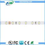 明るいSMD3528-WN60-24V LEDのストリップ高く