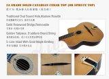 Guitarra aciganada à moda elegante nova do jazz com preço inferior