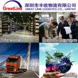 Serviço da carga do oceano (FCL/LCL) de Shenzhen/Shanghai/Guangzhou/Ningbo/Dalian/Xiamen a Cidade do México/Manzanillo/Guadalajara/Alovarado