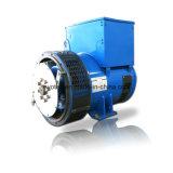 Evotec Qualität 3 Phase Wechselstrom-synchroner Drehstromgenerator