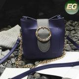 Alta qualità calda Sy8075 del sacchetto del progettista della signora Handbag Top Sale Women di formato medio 2017