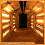 赤外線バーナーの粉の治癒炉Poudre De Cuisson Au 4