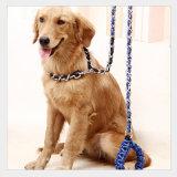 Hundekette für Hundehaustier-Produkt-Hundeleine-Zubehör