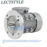 Asynchrone Elektrische Trede die in drie stadia Motor met 380V AC, 0.25kw, 15:1, 93.3rpm, 21n beklimmen. M