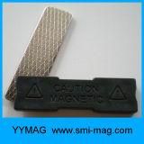 Divisa conocida magnética plástica de la etiqueta conocida del imán de la alta calidad para la venta