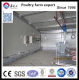 Chambre de poulet d'utilisation de ferme de Chicen et matériel automatique