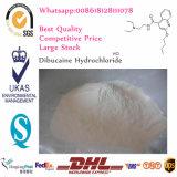 Lokales betäubendes Puderdibucaine-Hydrochlorid/DibucaineHCl CAS 61-12-1