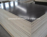 Contraplacado de filme WBP / Marine / Recycle Plywood (Poplar, Combi, Birch Core)
