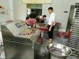 중국에 있는 판매를 위한 호박 저미는 기계