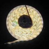 Heet-verkoop! flexibele LEIDENE 60LEDs/M SMD2835 Lichte Strook 12V/24V gelijkstroom