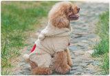 Multicolor Into The Fall et Winter Clothes Vêtements pour animaux de compagnie