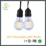 Luz Incandescent dos bulbos do diodo emissor de luz de Stoele A19/A60 Edison