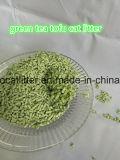 Tofu-Katze-Verunreinigen-Grüner Tee