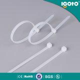Fascetta ferma-cavo di nylon obbligatoria della chiusura lampo di plastica a gettare