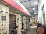 Stampatrice pratica economica utilizzata di rotocalco per il film di materia plastica