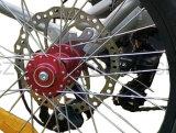 da roda gorda do triciclo três da carga do pneu de 48V 500W indicador elétrico do LCD da bateria de lítio do triciclo com pedal
