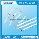 Dirigir tipo ataduras de cables del bloqueo de la lengüeta de la escala de acero del reparto 316 el solo