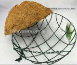 Las cestas colgantes de la flor artificial al por mayor atan con alambre cestas colgantes con el encadenamiento de los Cocos y del hierro