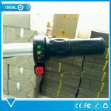 Самокат регулярного пассажира пригородных поездов самоката урбанской складчатости человека электрический, облегченный электрический велосипед с светами СИД