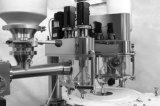 Linha de produção de rotulagem Lavar-Secagem-Encher-Tampando do pó da injeção do tubo de ensaio da série de Fzld para (farmacêutico) (FZLD)