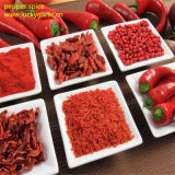 Spcification organisches rotes Paprika-Großhandelspuder