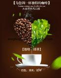 커피, 체중 감소 커피를 체중을 줄이는 OEM 바디 아름다움