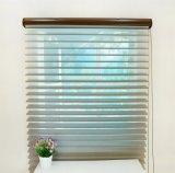 Основная прозрачная ткань шторок ролика La Shangri