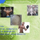 Esteróides para o efeito de Methenolone Enanthate/Primobolan & o benefício de amontoamento CAS: 303-42-4