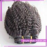 Afro brasileiro do cabelo do Virgin de trama do cabelo humano de Remy Curly