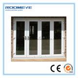 Diseño de la puerta exterior de la casa del frente del marco del PVC de Roomeye