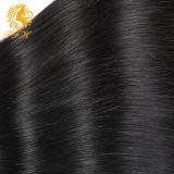 100%のブラジルのバージンの毛は完全なクチクラの直毛の振を束ねる