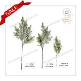 Filiale di albero artificiale del mestiere di natale ecologico del PE per la decorazione della cote