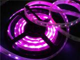 각종 길이 1개의 LED 지구에서 5050 Rgbww 4