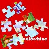 Jeu de livre de puzzle de couleur d'impression de carton d'enfant