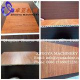 Chaîne de production en plastique en bois de panneau de machine/mur d'extrusion de profil de PVC WPC