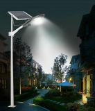 en luz ajustable al aire libre del jardín de la calle del panel solar de la venta 10W-30W