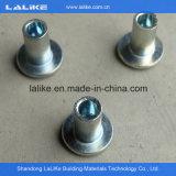 Accessoires d'échafaudage de Ringlock, système galvanisé d'échafaudage de Ringlock